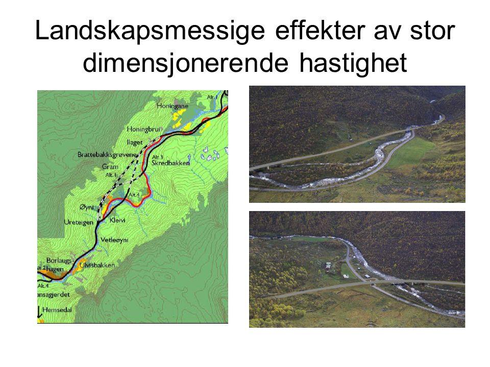 Landskapsmessige effekter av stor dimensjonerende hastighet