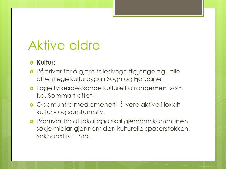Aktive eldre  Kultur:  Pådrivar for å gjere teleslynge tilgjengeleg i alle offentlege kulturbygg i Sogn og Fjordane  Lage fylkesdekkande kulturelt arrangement som t.d.