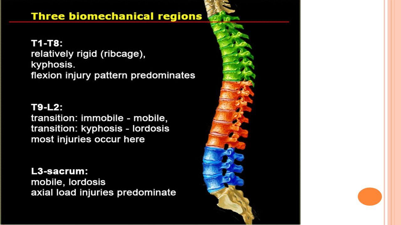 T VERRTAGG - AVRIVNING Skyldes som regel direkte traume mot tverrtagg eller kraftig muskelkontraksjon.