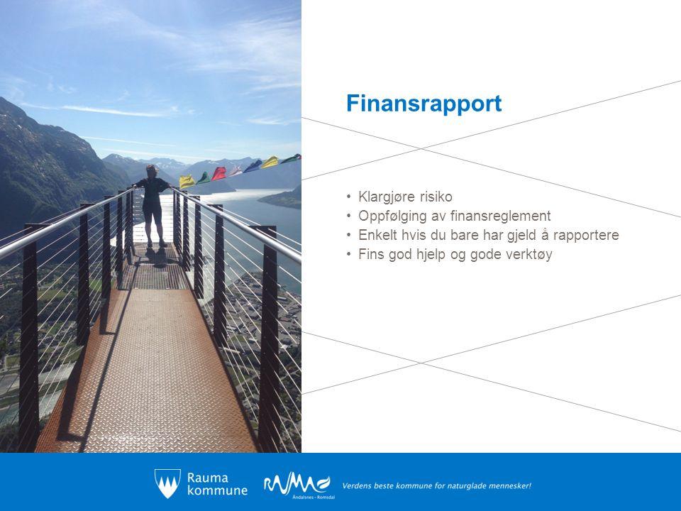 Finansrapport Klargjøre risiko Oppfølging av finansreglement Enkelt hvis du bare har gjeld å rapportere Fins god hjelp og gode verktøy
