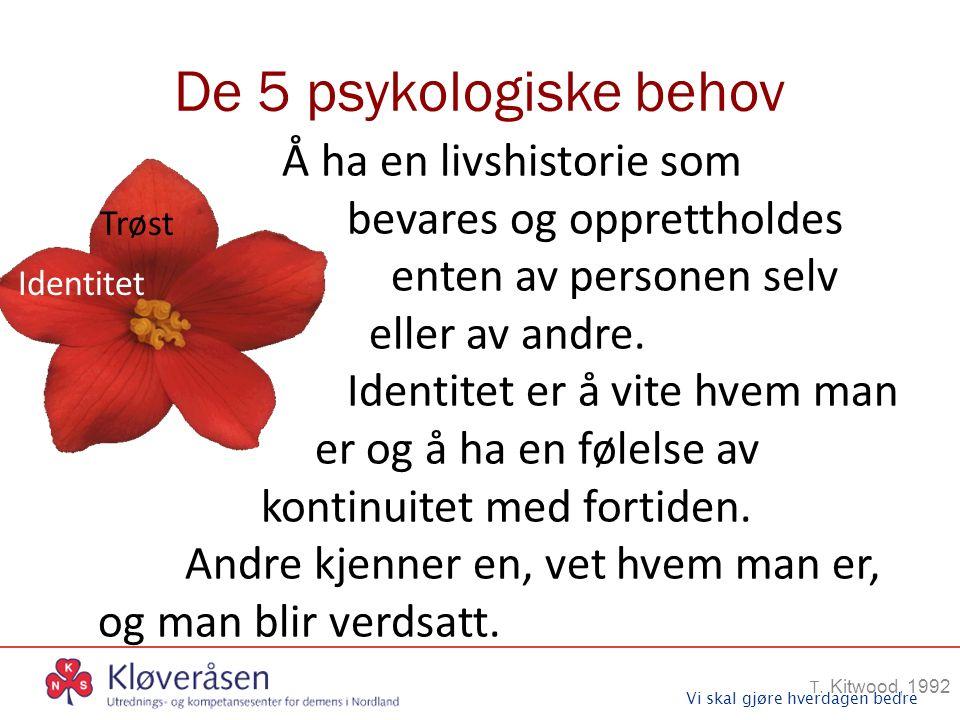 Vi skal gjøre hverdagen bedre De 5 psykologiske behov T. Kitwood, 1992 Trøst Å ha en livshistorie som bevares og opprettholdes enten av personen selv
