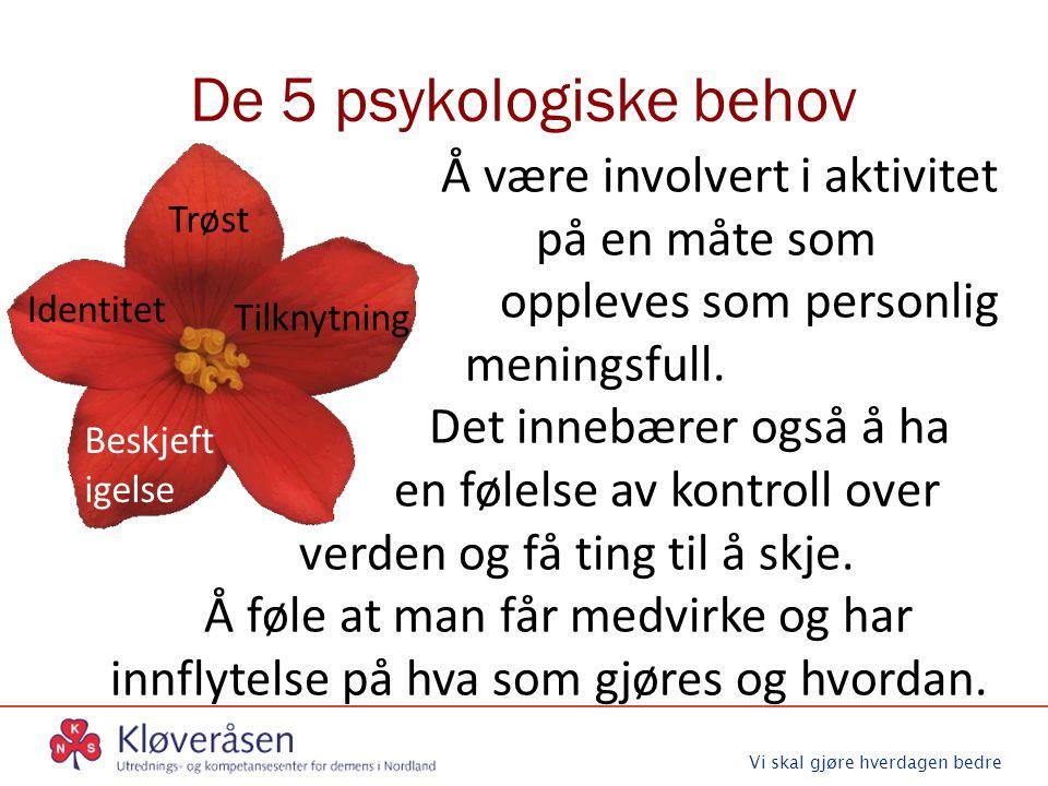 Vi skal gjøre hverdagen bedre De 5 psykologiske behov Trøst Identitet Tilknytning Beskjeft igelse Å være involvert i aktivitet på en måte som oppleves som personlig meningsfull.