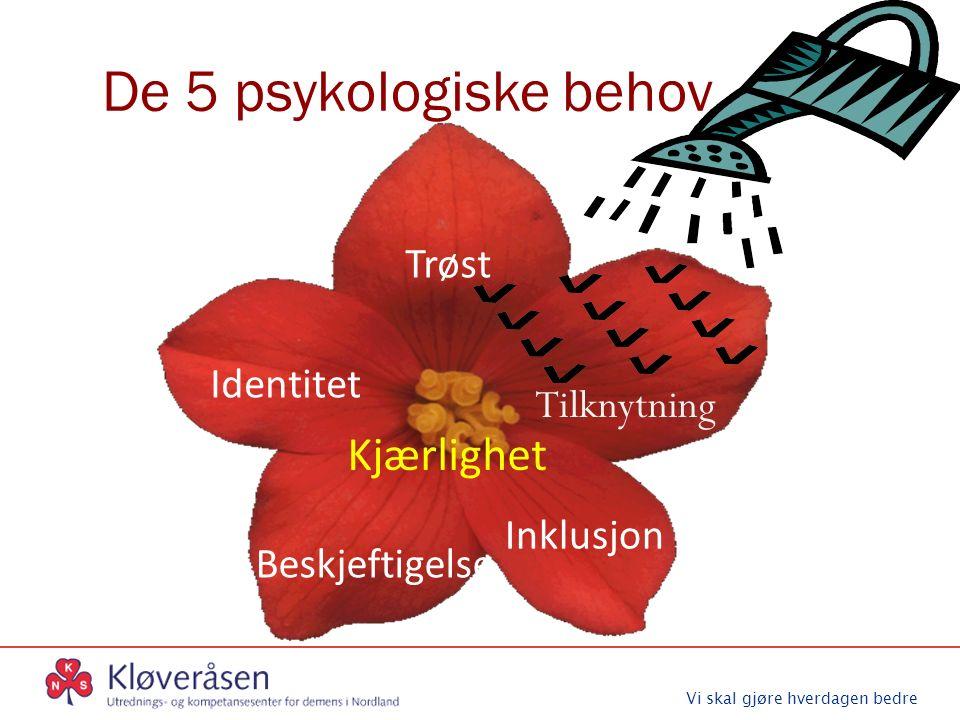 Vi skal gjøre hverdagen bedre De 5 psykologiske behov Tilknytning Trøst Beskjeftigelse Inklusjon Kjærlighet Identitet