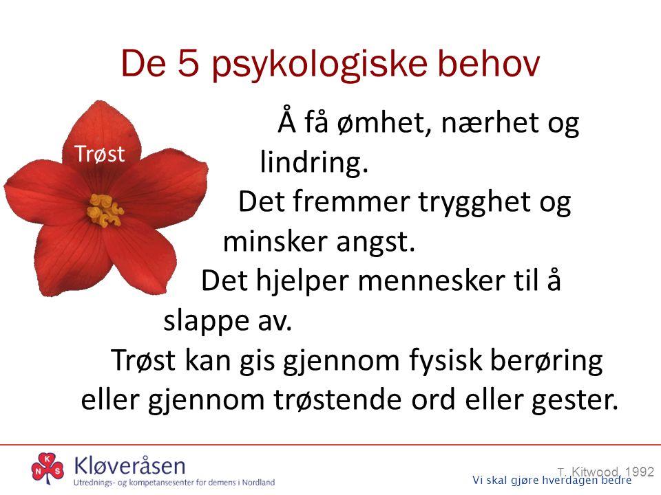 Vi skal gjøre hverdagen bedre De 5 psykologiske behov T. Kitwood, 1992 Trøst Å få ømhet, nærhet og lindring. Det fremmer trygghet og minsker angst. De