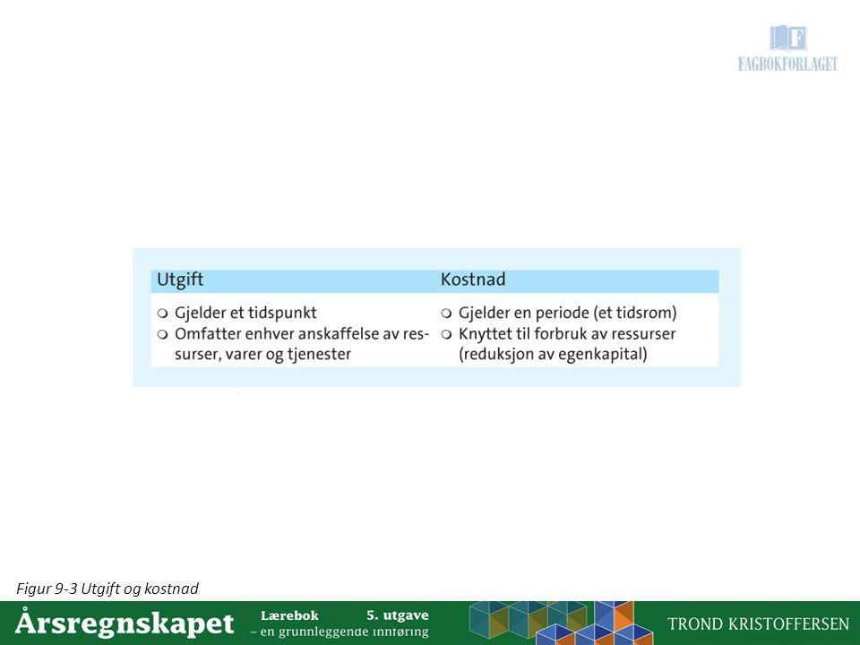 Figur 9-3 Utgift og kostnad