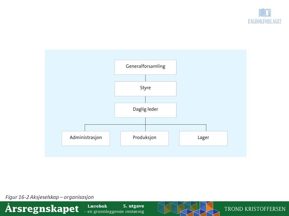 Figur 16-2 Aksjeselskap – organisasjon
