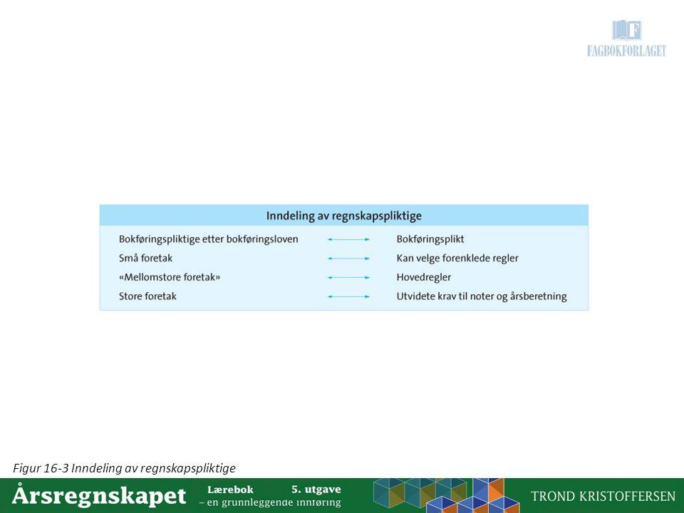 Figur 16-3 Inndeling av regnskapspliktige