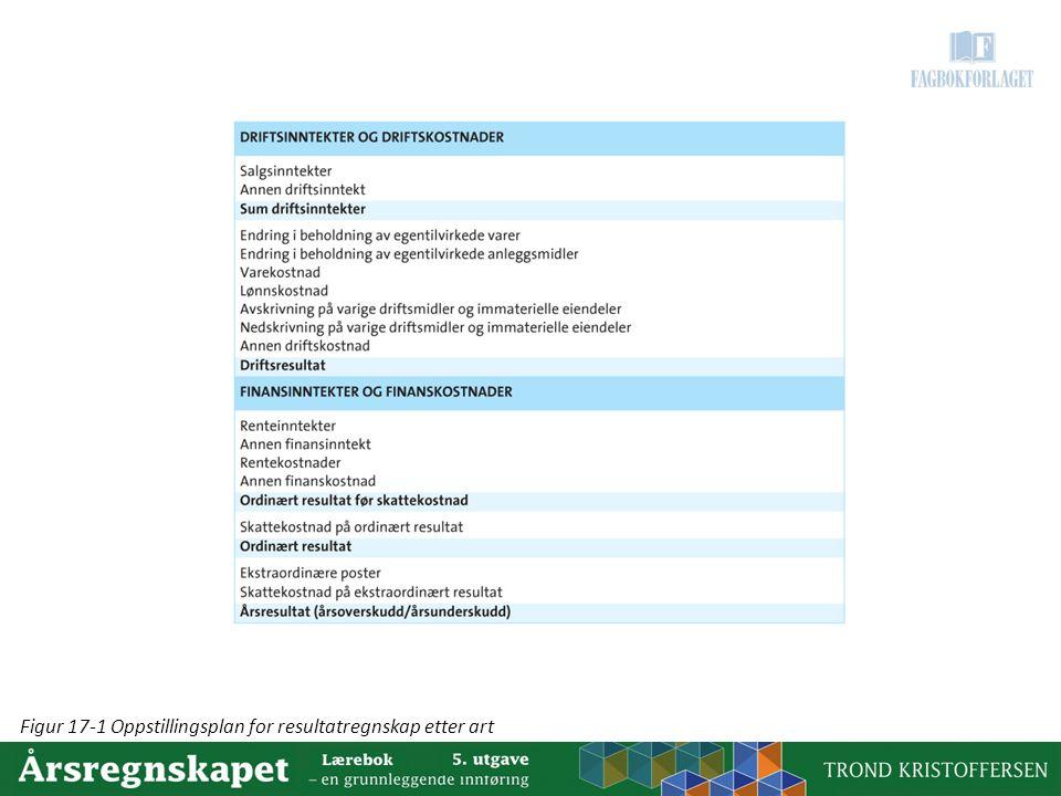 Figur 17-1 Oppstillingsplan for resultatregnskap etter art