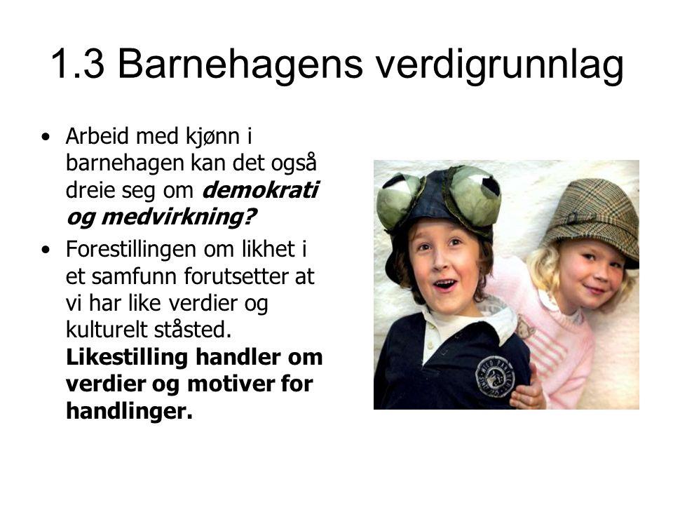 Litteratur: Askeland,Leif og Nina Rossholt(2009): Kjønnsdiskurser i barnehagen.