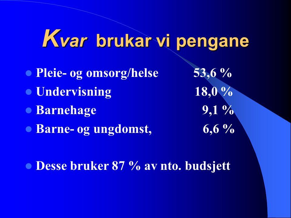 K var brukar vi pengane Pleie- og omsorg/helse 53,6 % Undervisning 18,0 % Barnehage 9,1 % Barne- og ungdomst, 6,6 % Desse bruker 87 % av nto. budsjett