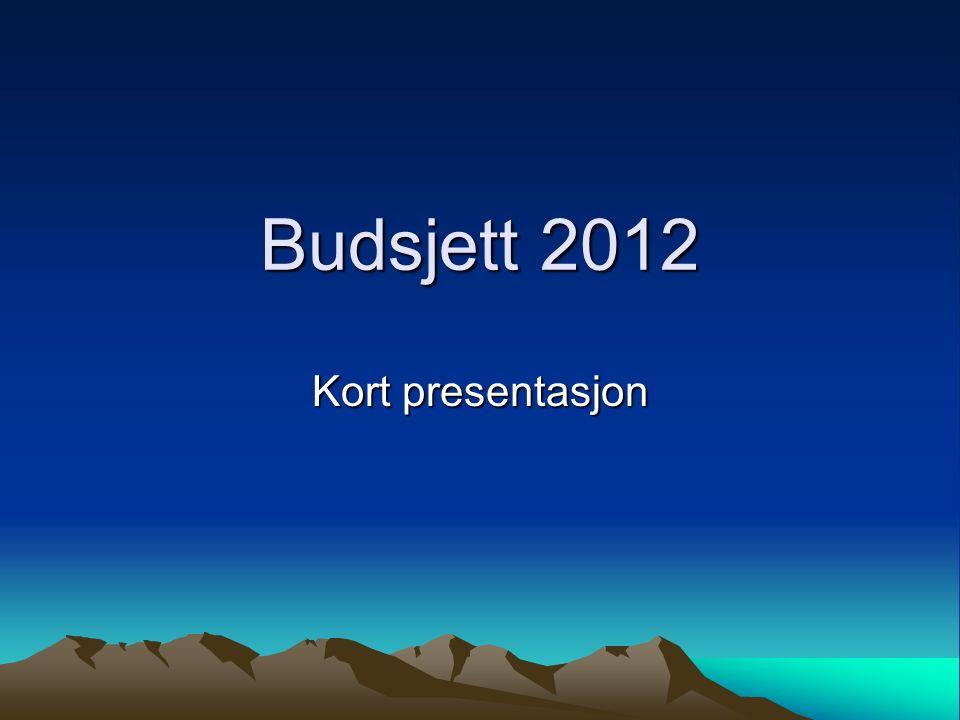 Budsjett 2012 Kort presentasjon