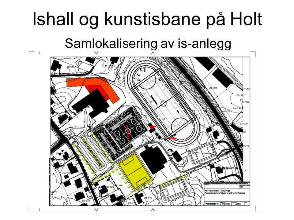 Ishall og kunstisbane på Holt Samlokalisering av is-anlegg