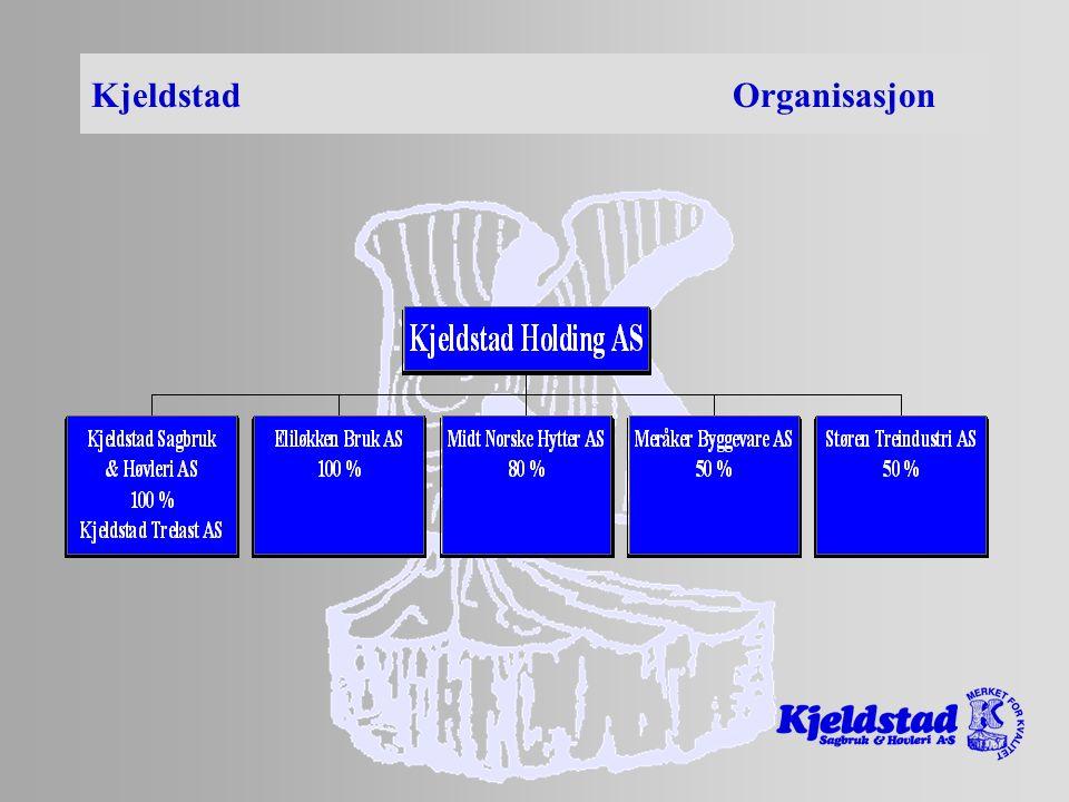Kjeldstad Organisasjon