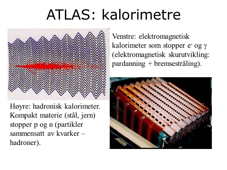 23 ATLAS: kalorimetre Venstre: elektromagnetisk kalorimeter som stopper e - og   elektromagnetisk skurutvikling: pardanning + bremsestråling).