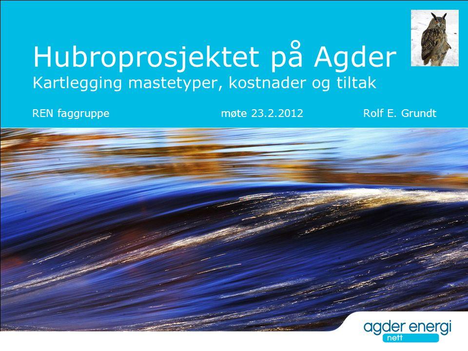 Hubroprosjektet på Agder Kartlegging mastetyper, kostnader og tiltak REN faggruppe møte 23.2.2012 Rolf E. Grundt