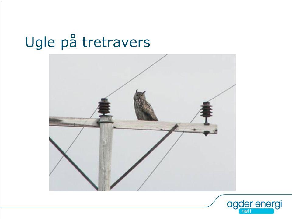 Oppsummering forebyggende tiltak Tiltak for å unngå strømgjennomgang i mast (AA): 1.