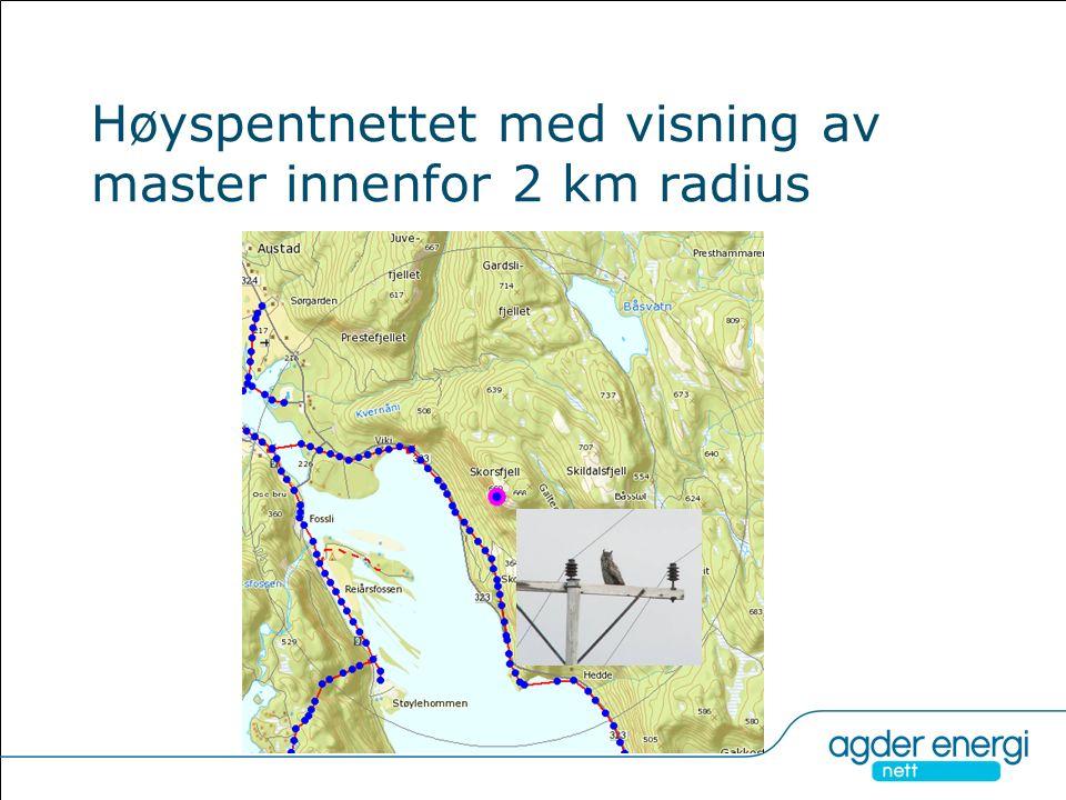 Høyspentnettet med visning av master innenfor 2 km radius