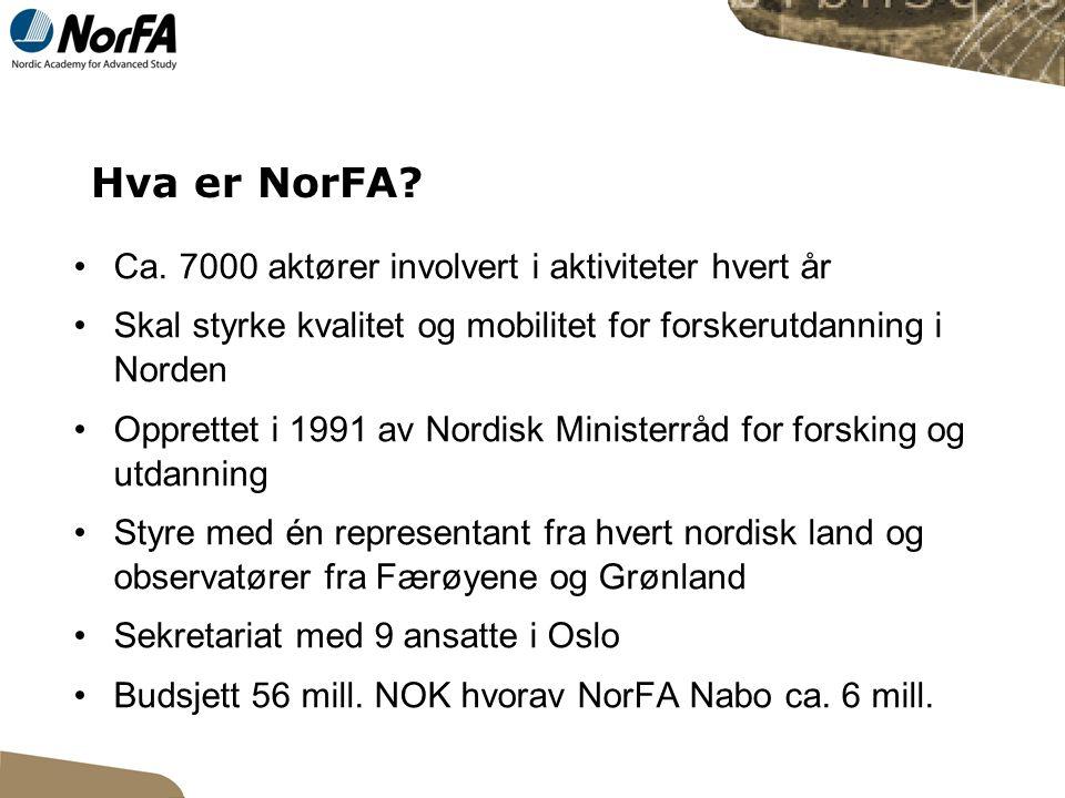 Hva er NorFA. Ca.