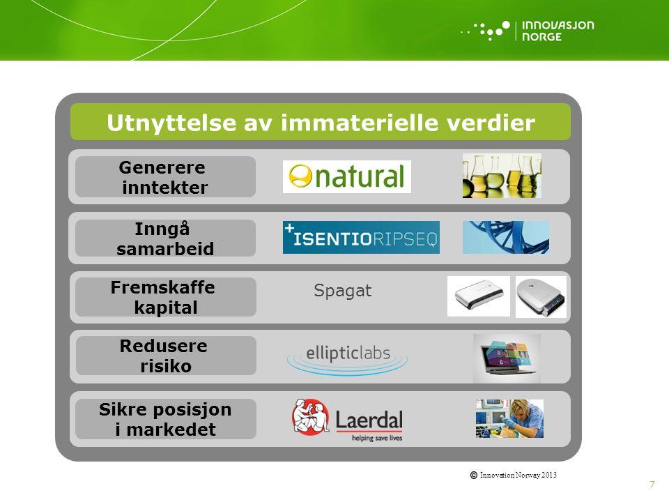 7 Innovation Norway 2013 Utnyttelse av immaterielle verdier Generere inntekter Inngå samarbeid Fremskaffe kapital Redusere risiko Sikre posisjon i mar