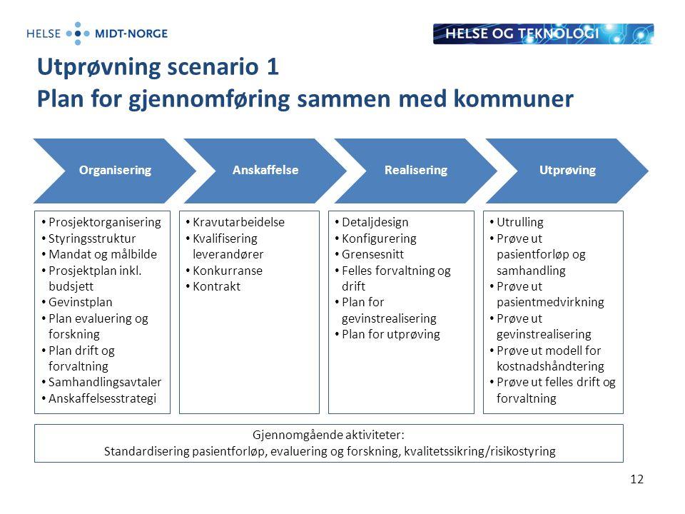 Utprøvning scenario 1 Plan for gjennomføring sammen med kommuner 12 OrganiseringAnskaffelseRealiseringUtprøving Prosjektorganisering Styringsstruktur Mandat og målbilde Prosjektplan inkl.