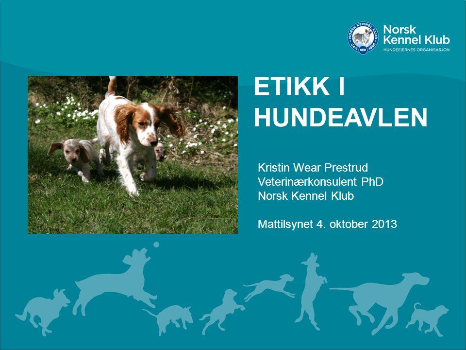 ETIKK I HUNDEAVLEN Kristin Wear Prestrud Veterinærkonsulent PhD Norsk Kennel Klub Mattilsynet 4. oktober 2013