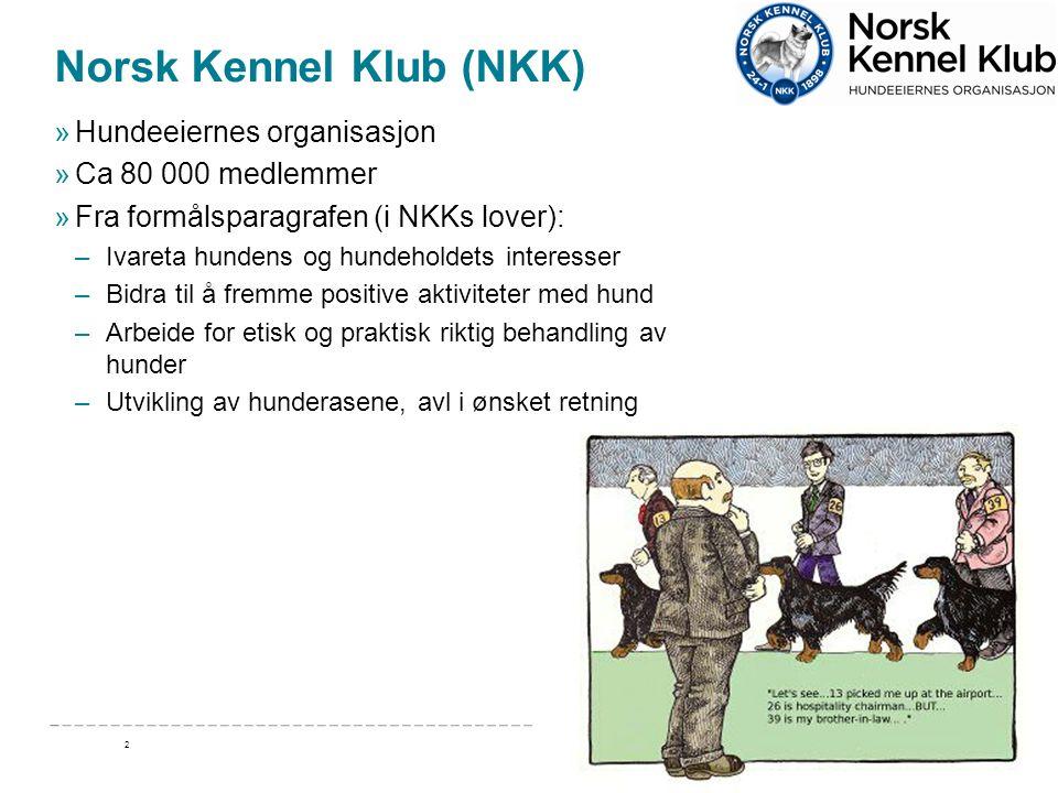 Takk for oppmerksomheten! www.nkk.no