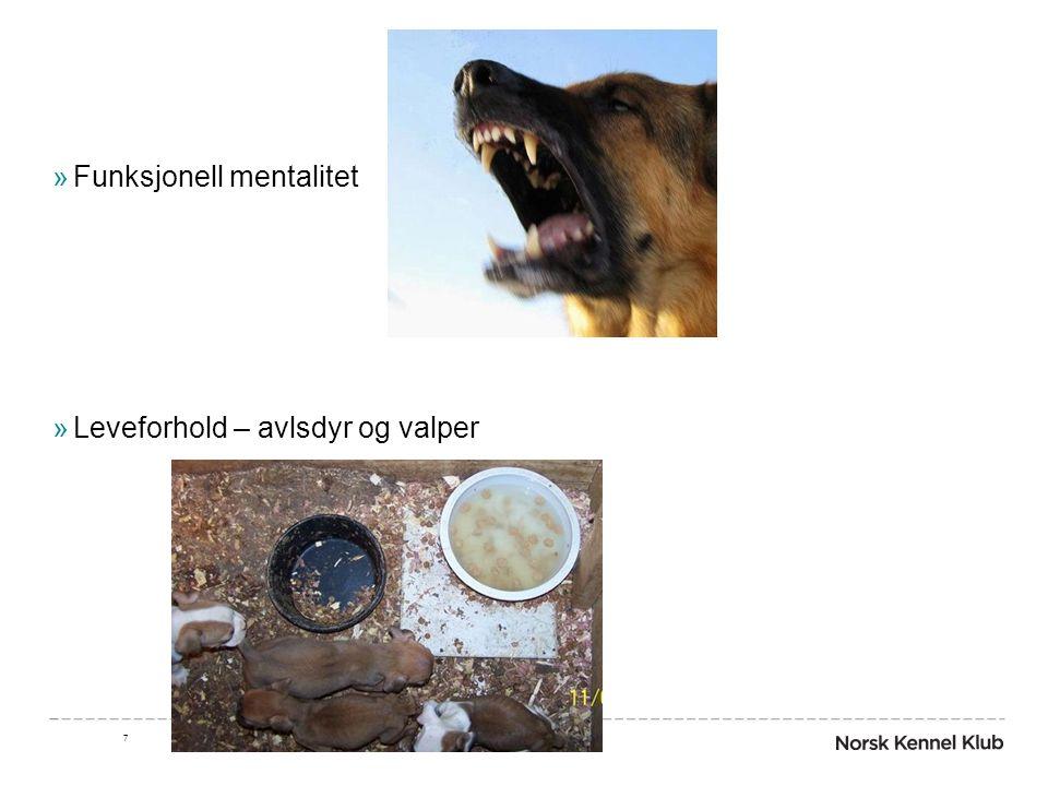 »Funksjonell mentalitet »Leveforhold – avlsdyr og valper 7