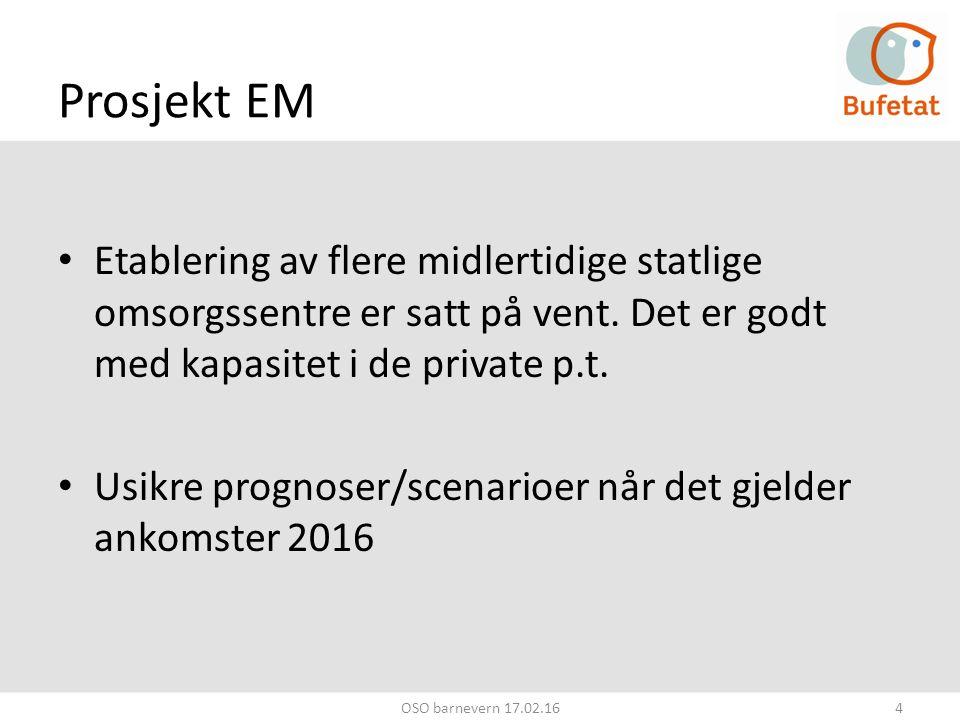 Prosjekt EM Etablering av flere midlertidige statlige omsorgssentre er satt på vent.