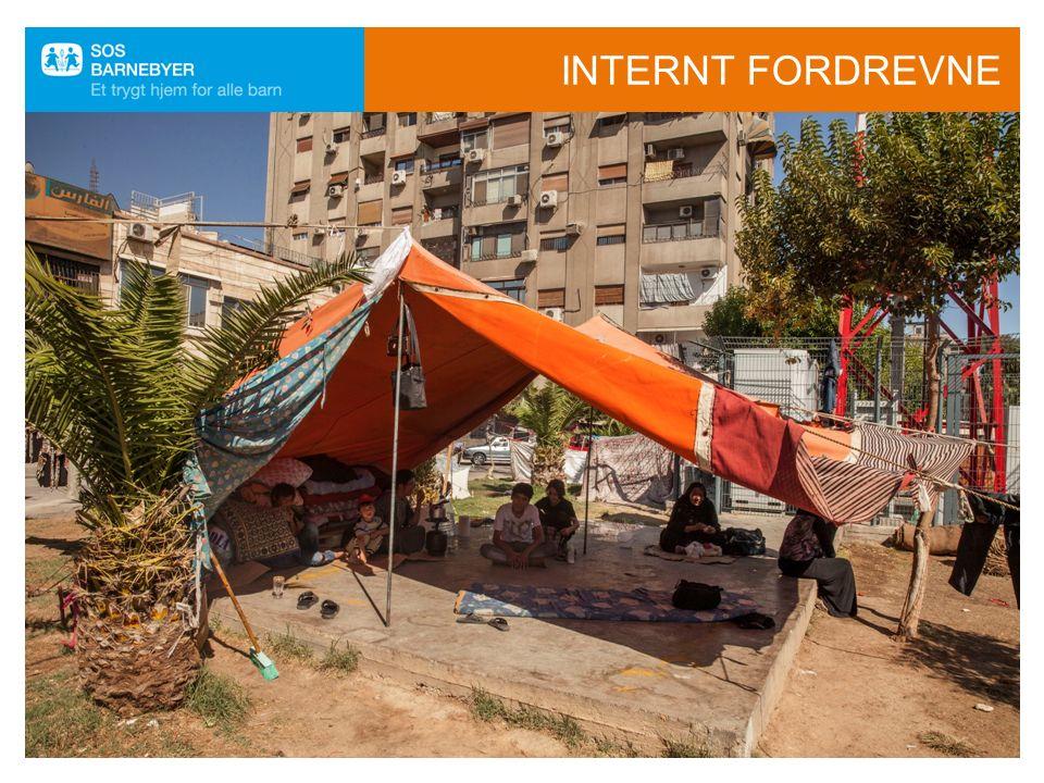 FLYKTNINGKONVENSJONEN FNs Flykningkonvensjonen er en internasjonal avtale om flyktningers rettigheter.