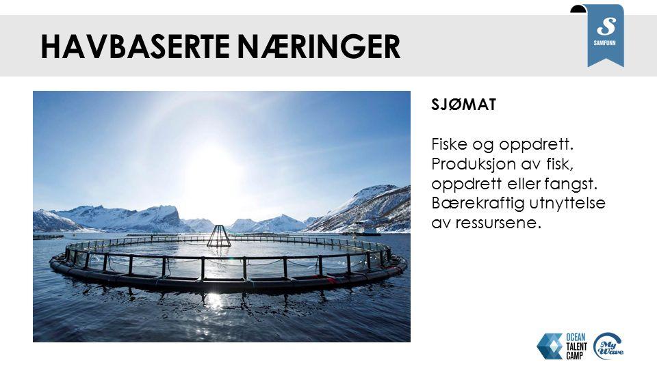 HAVBASERTE NÆRINGER SJØMAT Fiske og oppdrett. Produksjon av fisk, oppdrett eller fangst.