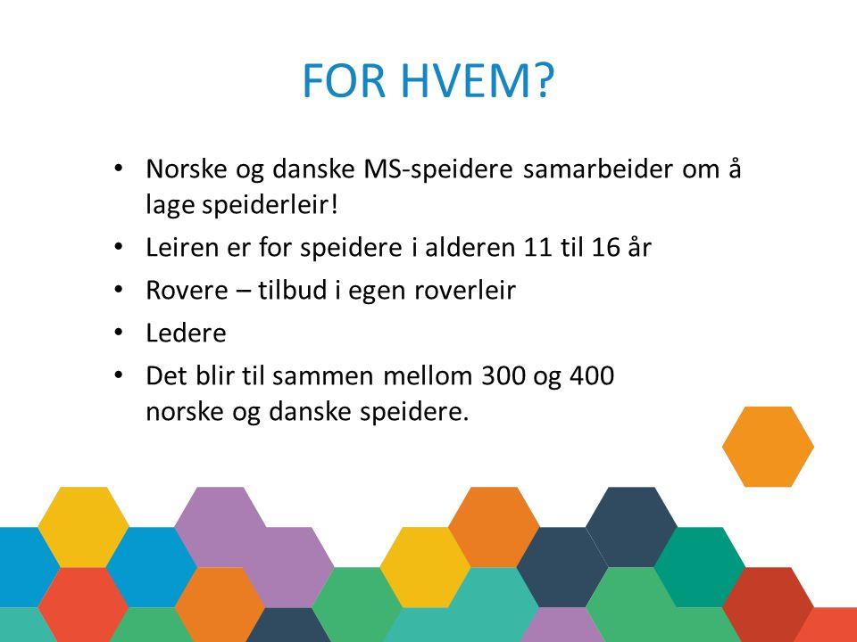 FOR HVEM. Norske og danske MS-speidere samarbeider om å lage speiderleir.