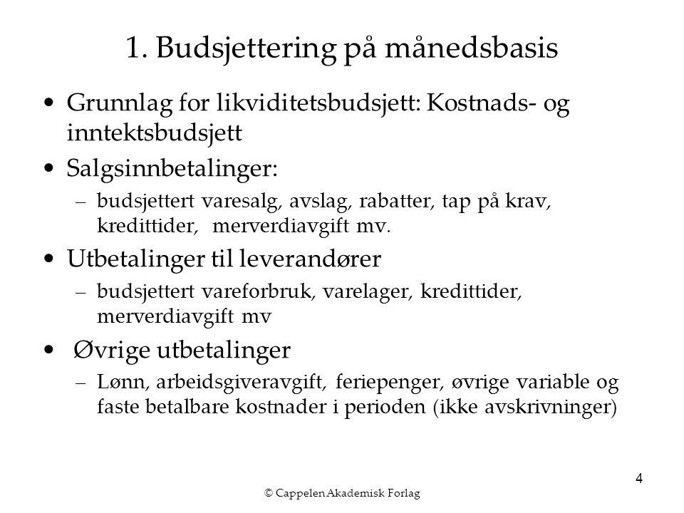 © Cappelen Akademisk Forlag 5 1. Budsjettering på månedsbasis
