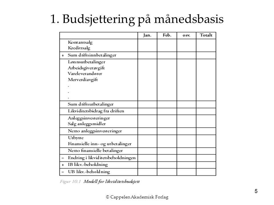 © Cappelen Akademisk Forlag 16 3.Oppfølging av likviditetsbudsjett