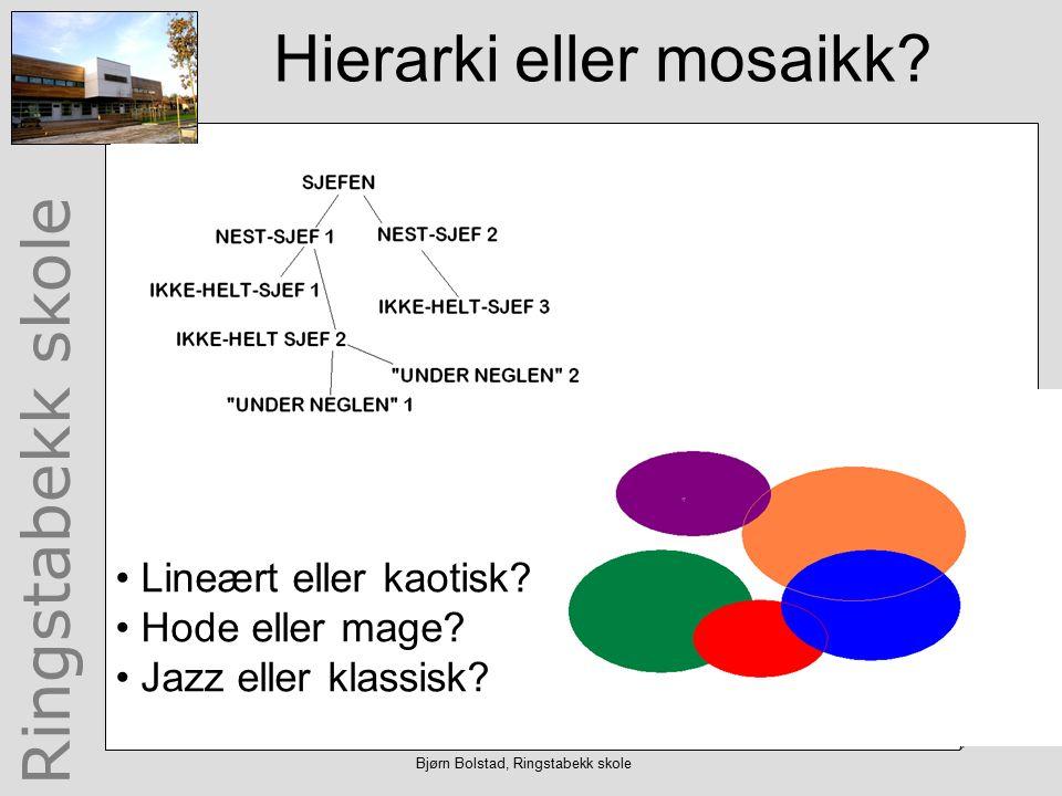 Ringstabekk skole Hierarki eller mosaikk. Lineært eller kaotisk.