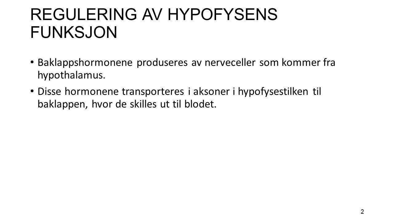 2 REGULERING AV HYPOFYSENS FUNKSJON Baklappshormonene produseres av nerveceller som kommer fra hypothalamus.