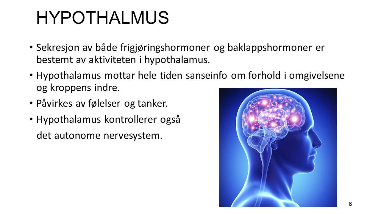 7 HYPOTHALAMUS (HT) FORTS.