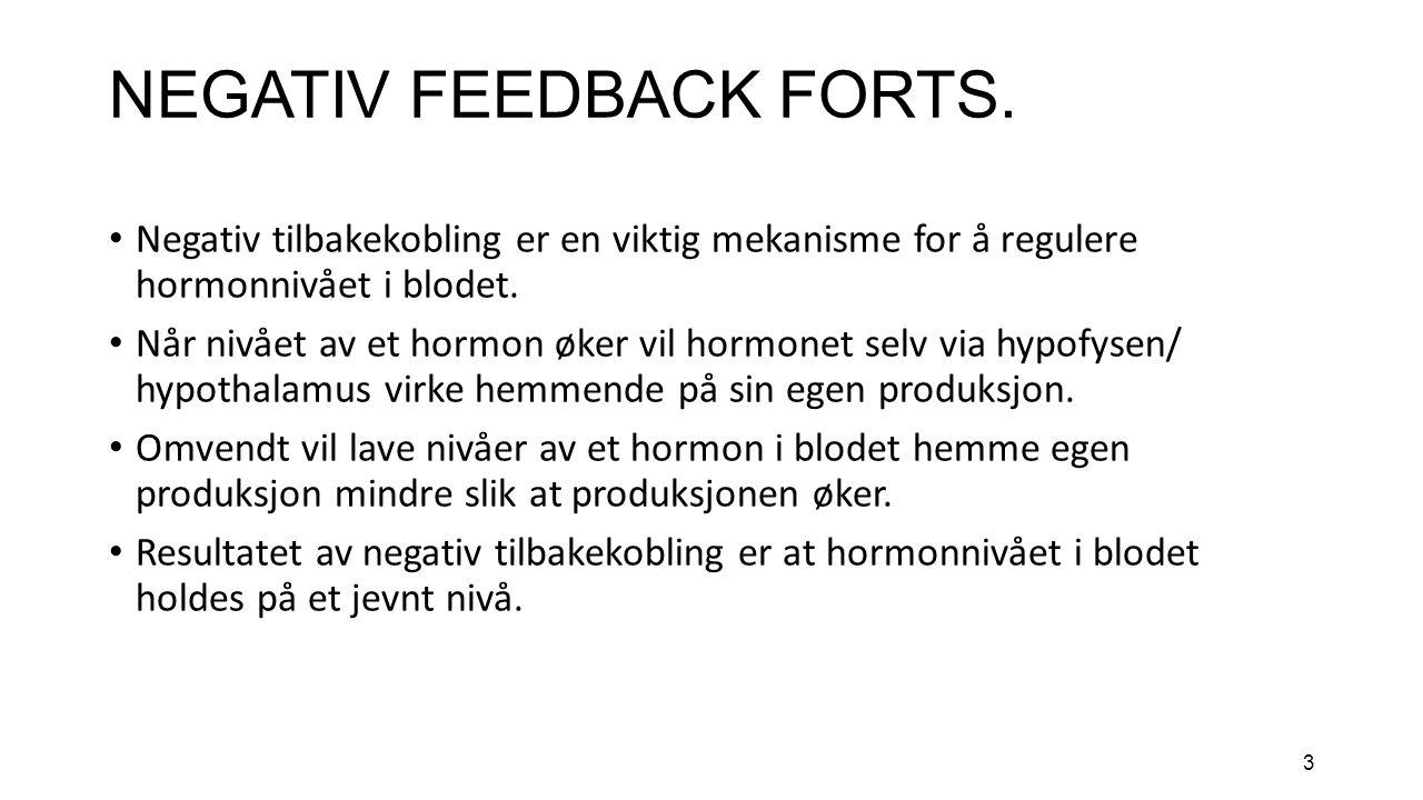 3 NEGATIV FEEDBACK FORTS.