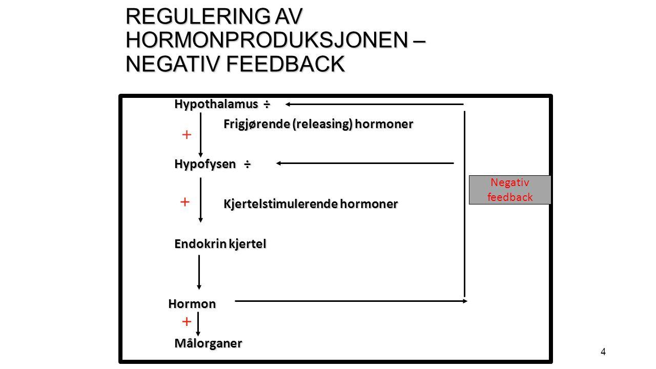 4 REGULERING AV HORMONPRODUKSJONEN – NEGATIV FEEDBACK Hypothalamus ÷ Frigjørende (releasing) hormoner Hypofysen ÷ Kjertelstimulerende hormoner Endokrin kjertel Hormon HormonMålorganer + + + Negativ feedback