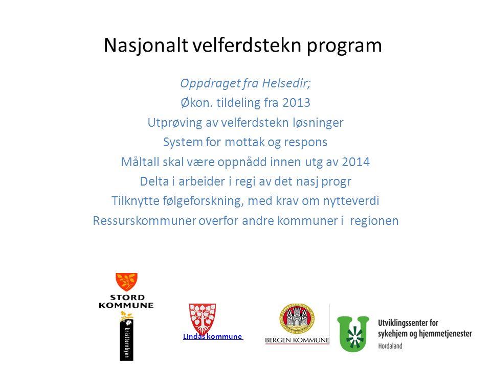 Nasjonalt velferdstekn program Oppdraget fra Helsedir; Økon.