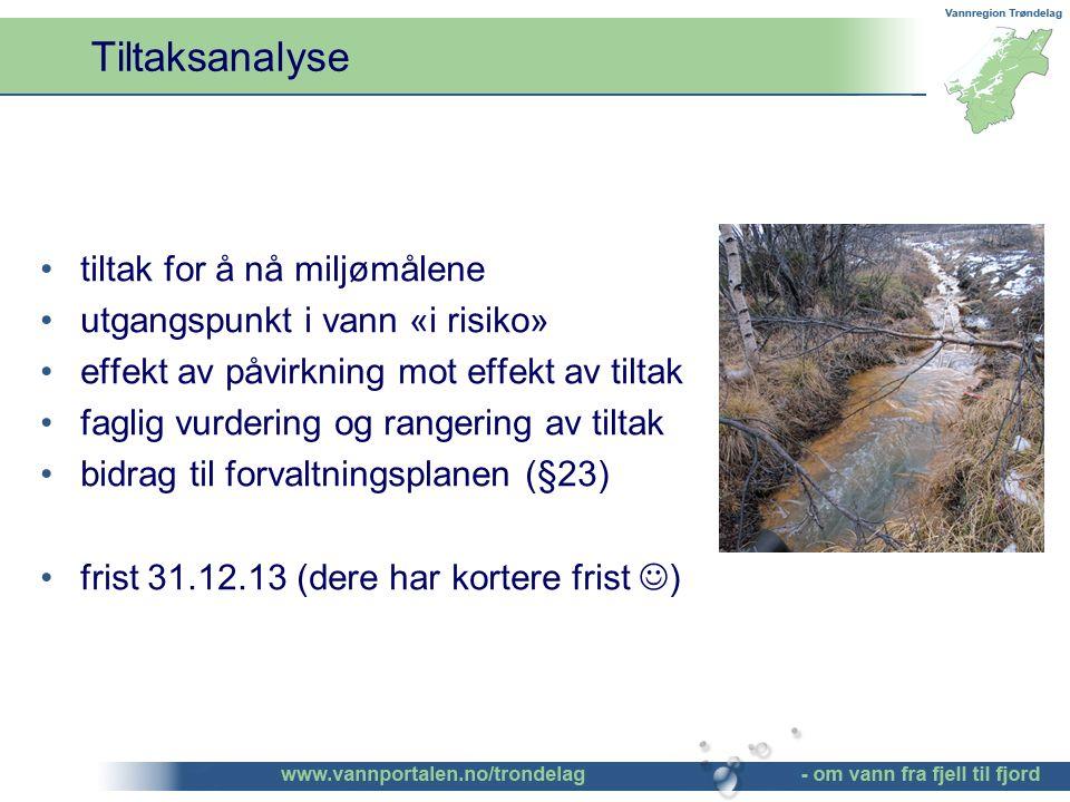 Tiltaksanalyse tiltak for å nå miljømålene utgangspunkt i vann «i risiko» effekt av påvirkning mot effekt av tiltak faglig vurdering og rangering av tiltak bidrag til forvaltningsplanen (§23) frist 31.12.13 (dere har kortere frist )