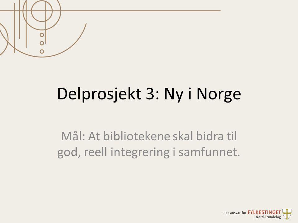 Delprosjekt 3: Ny i Norge Mål: At bibliotekene skal bidra til god, reell integrering i samfunnet.