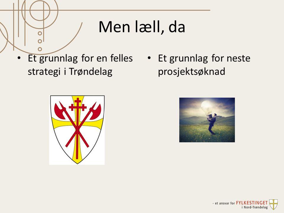 Men læll, da Et grunnlag for neste prosjektsøknad Et grunnlag for en felles strategi i Trøndelag