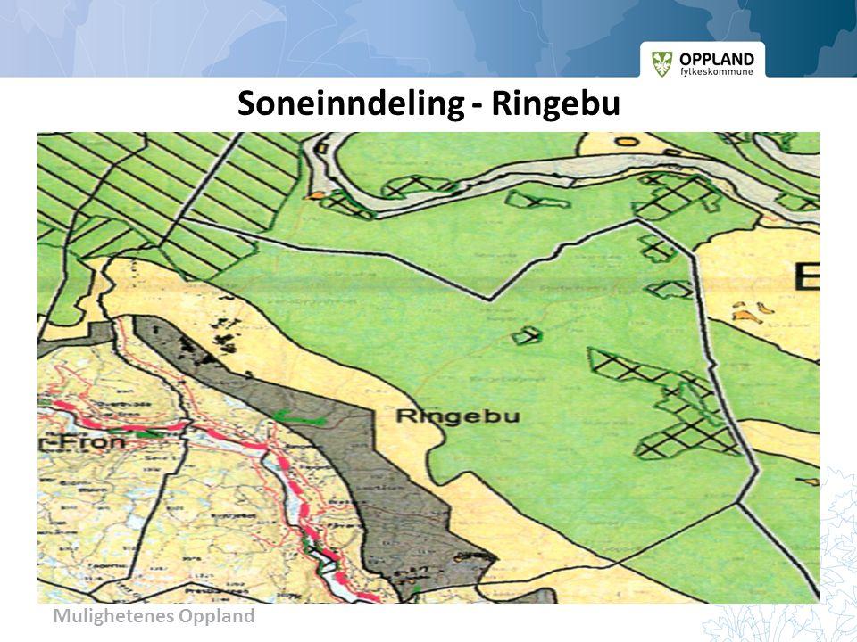 Mulighetenes Oppland Soneinndeling - Ringebu
