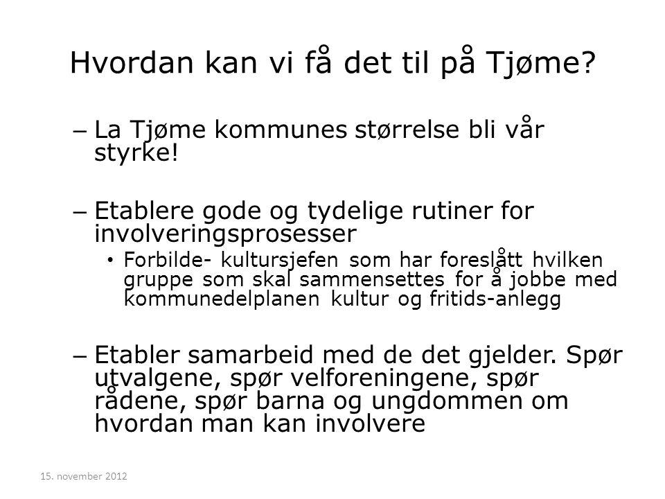 Hvordan kan vi få det til på Tjøme.– La Tjøme kommunes størrelse bli vår styrke.