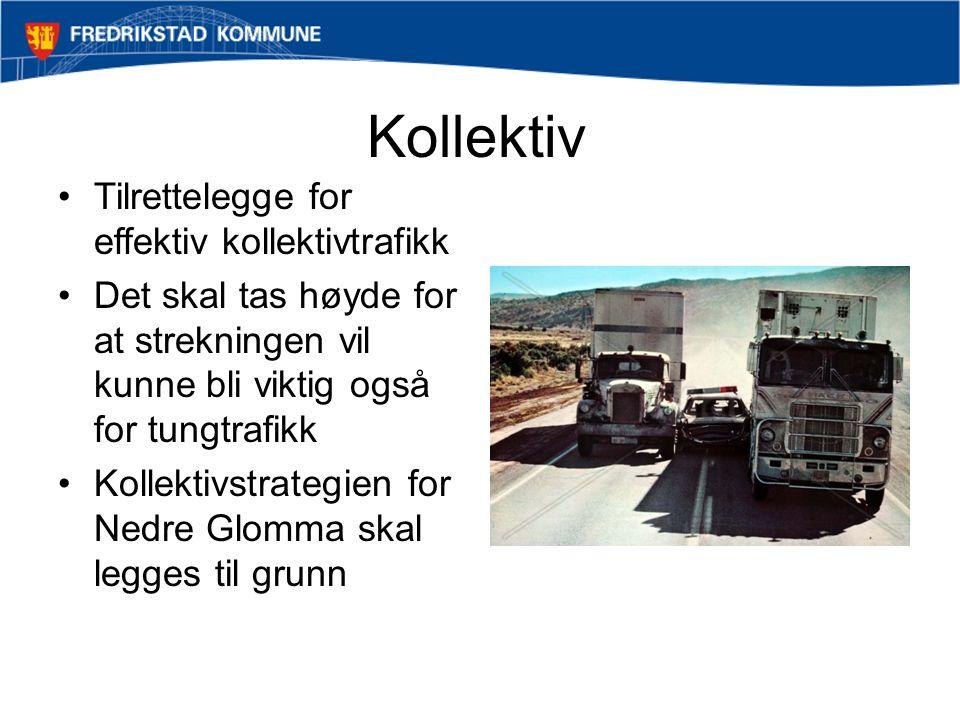 Kollektiv Tilrettelegge for effektiv kollektivtrafikk Det skal tas høyde for at strekningen vil kunne bli viktig også for tungtrafikk Kollektivstrategien for Nedre Glomma skal legges til grunn