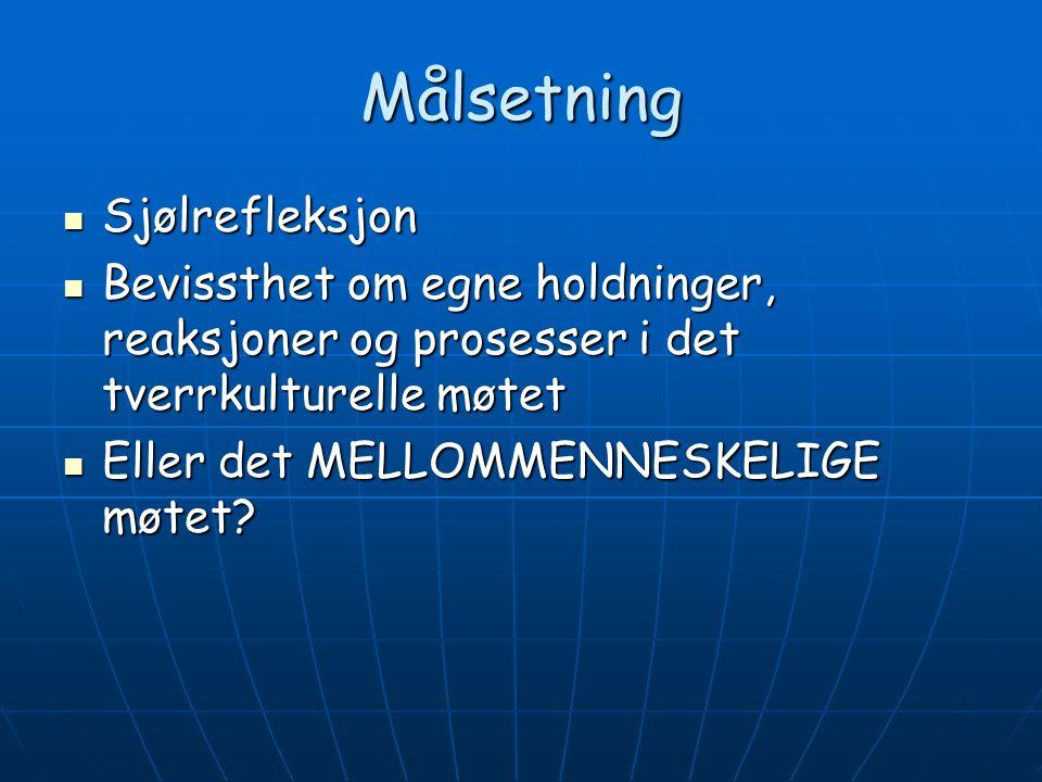 Fokus på oss selv som tjenesteytere Hordalandsmodellens grep : Her-og-Nå - situasjonen.