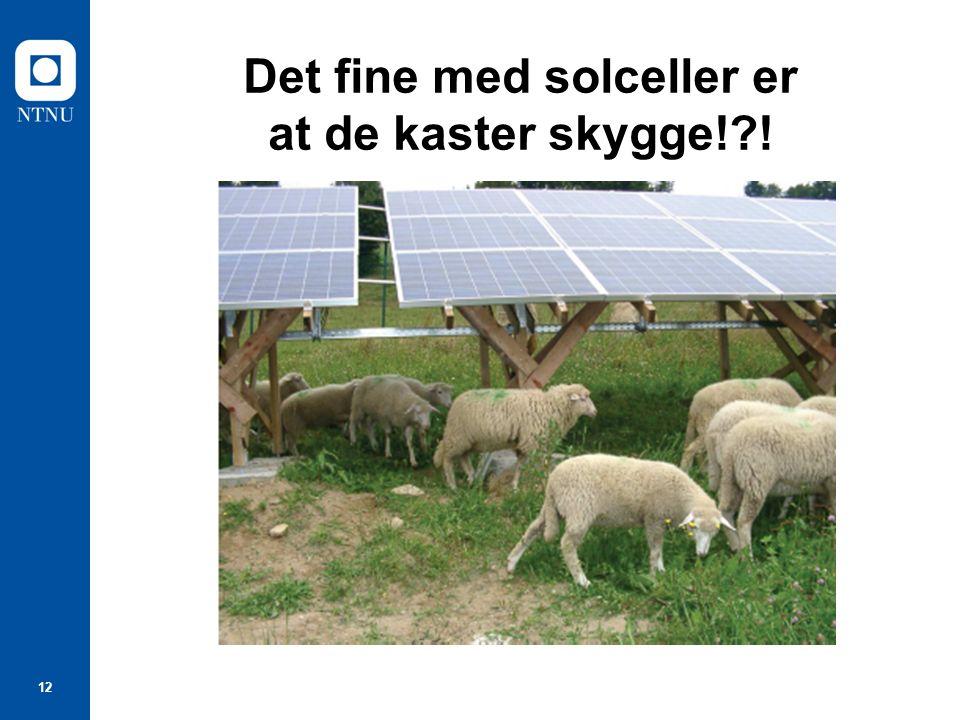 12 Det fine med solceller er at de kaster skygge! !