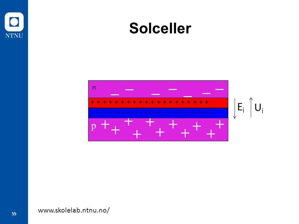 55 Solceller www.skolelab.ntnu.no/ p + + + + + + + + + + - - - - - - - - - - - - - - EiEi UiUi n