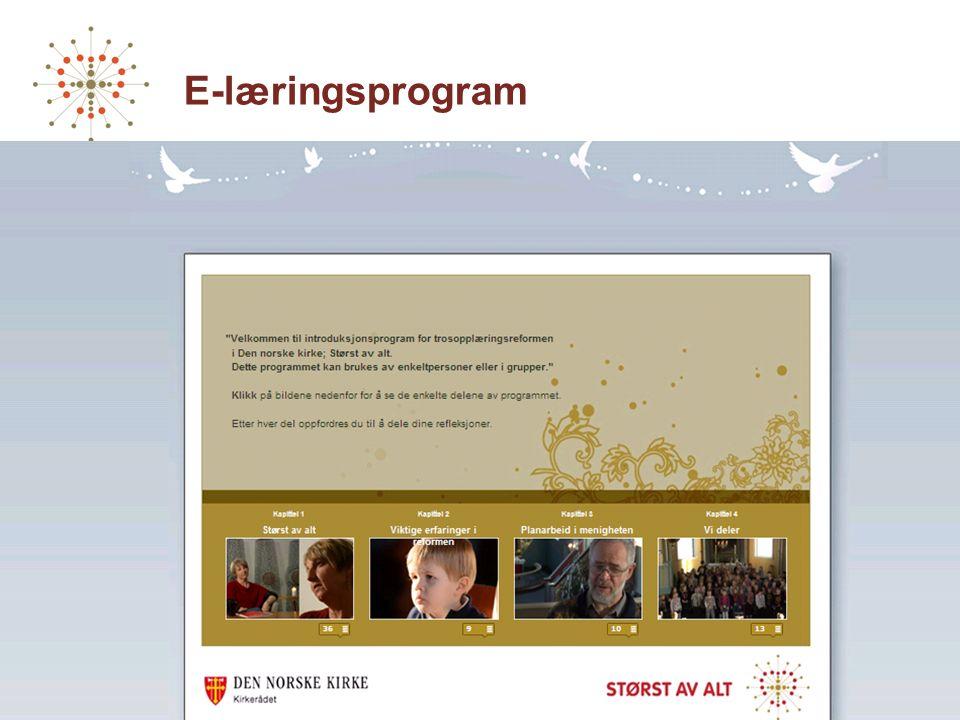 E-læringsprogram