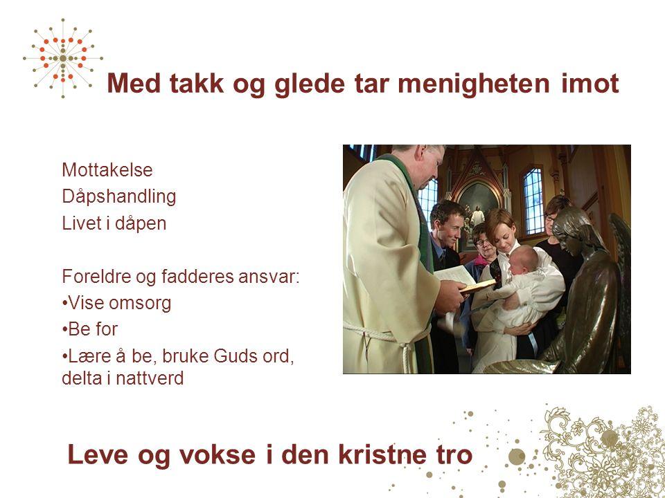 Erfaringer Trosopplæring og gudstjeneste Samarbeid i lokalsamfunnet Frivillige medarbeidere Økt kontakt med kirkens medlemmer.